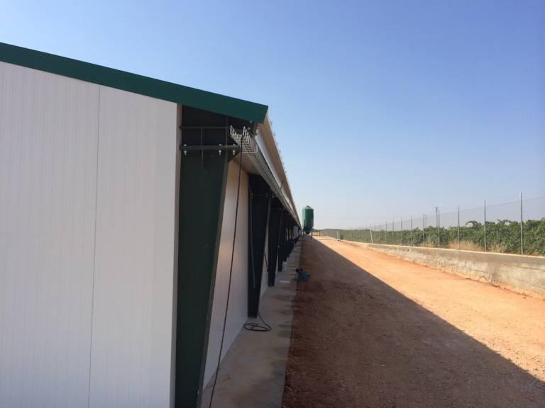 Centro Agropecario Avicola Quintanar Del Rey2